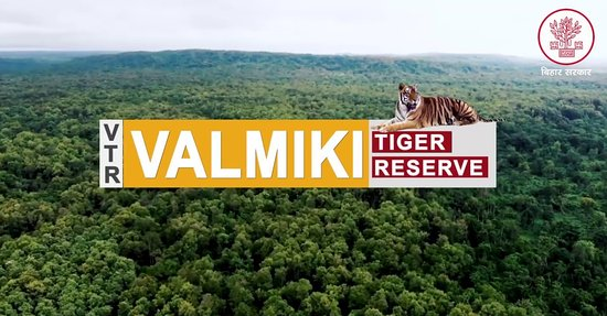 Valmiki National Park, Indie: If you are a wildlife lover then your journey must end here.