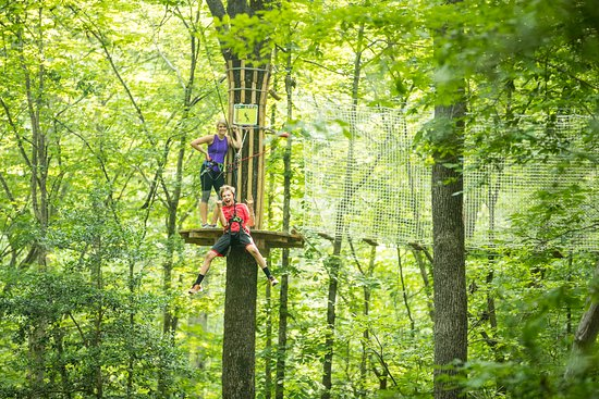 Maryland Heights, MO: Ziplines up to 500 feet in length!
