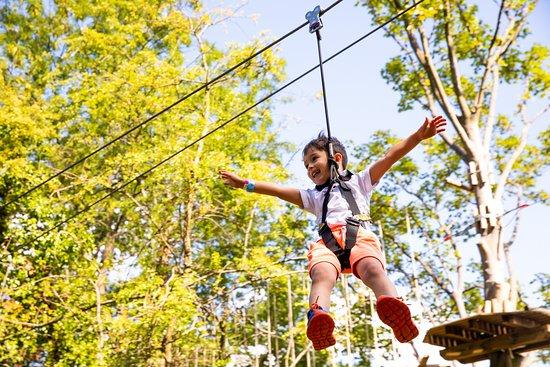 Go Ape Zipline & Adventure Park