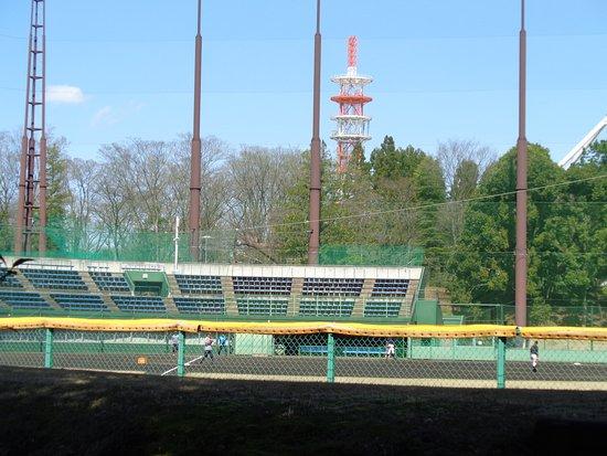 Tokorozawa Aviation Memorial Park Ballpark