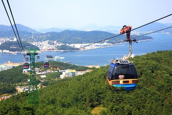 7-Day Best Private Tour from Busan:Tongyeong, Sucheon, Damyang...