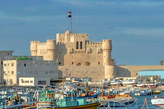 Alexandria city full day tour.