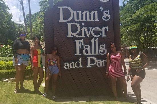 Dunn's River Falls - Private Tour