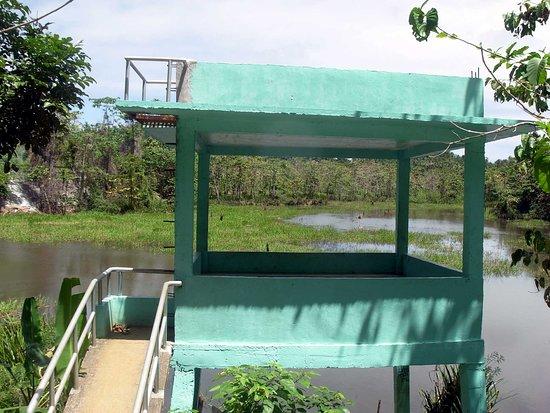 Paghungawan Marsh