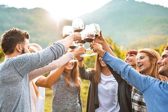 旧金山湾区私人纳帕谷豪华轿车葡萄酒乡村之旅
