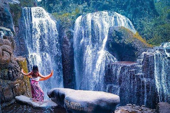 一日游-√Sangeh猴子森林√PuraTaman...