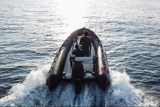Observação de baleias - Mônaco - Cap...