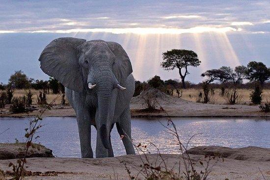 13 giorni Botswana Ultimate Adventure