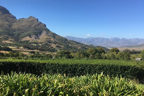 Volledige dag Zuid-Afrikaanse wijntour ...