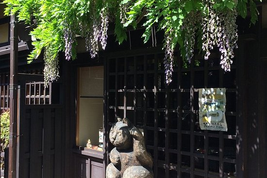 Valokuva: Takayama downtown online tour with expert guide