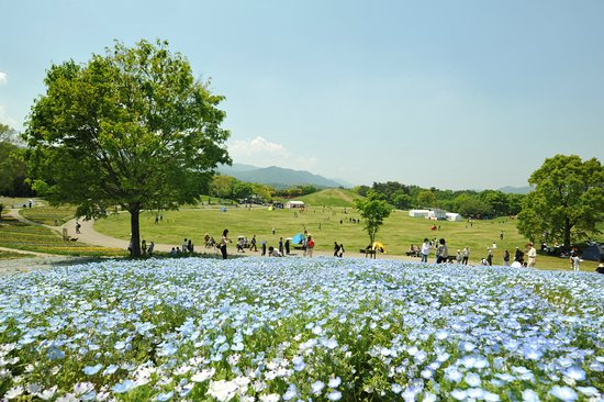 Sanuki Manno Park