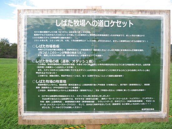 Shibata Bokujoeno Michi