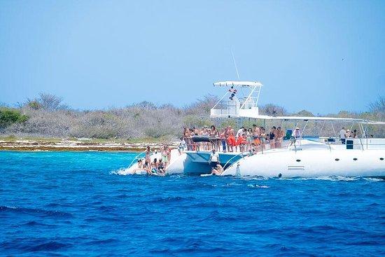 Catalina Island Tour & Snorkeling