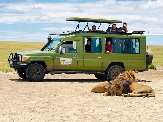 Shayona Safaris & Tours
