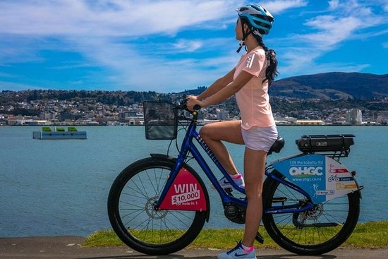 Dunedin E-Bike Hire Ltd