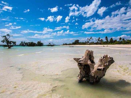 Mozambique: Mozambico 2