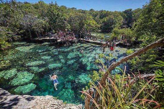 Tour de 1 dia a Bacalar, Cenotes e...