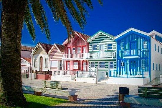 Aveiro Atlantic Tour - Natural Reserve - Barra Beach - Costa Nova
