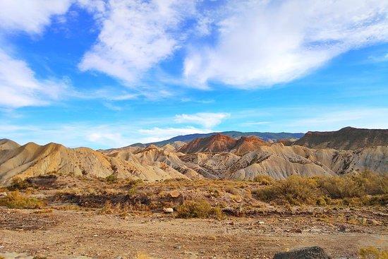 Excursión al Desierto de Tabernas...
