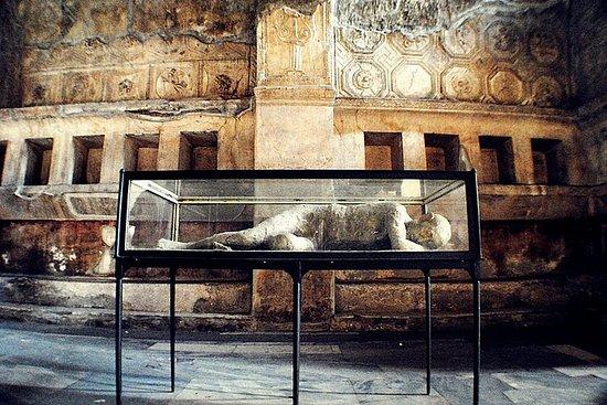 Pompeii Sorrento Positano privétour ...