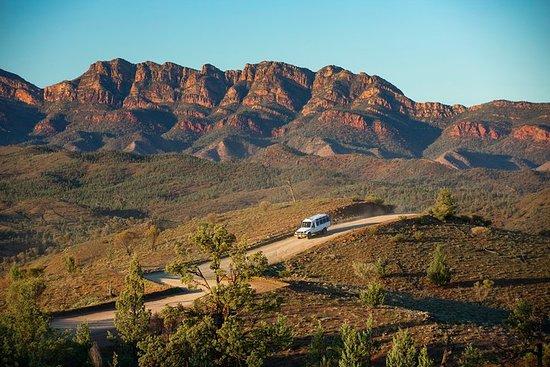 Half-Day Tour into Ikara-Flinders Ranges National Park