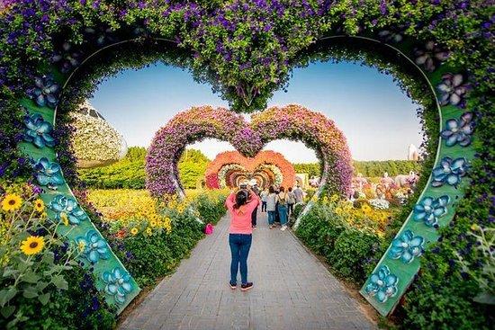 Dubai Miracle Garden Tickets Tours Tripadvisor