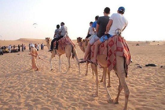 Combo Fra Dubai: Half-Day Abu Dhabi...