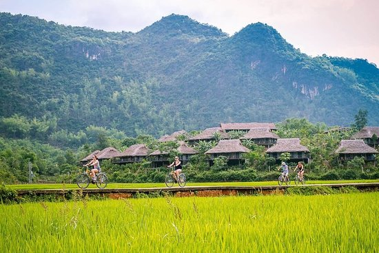 Biking and Walking Day Tour to Mai Chau...