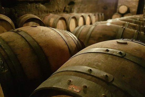 Venosa, antica colonia romana e città del vino Aglianico
