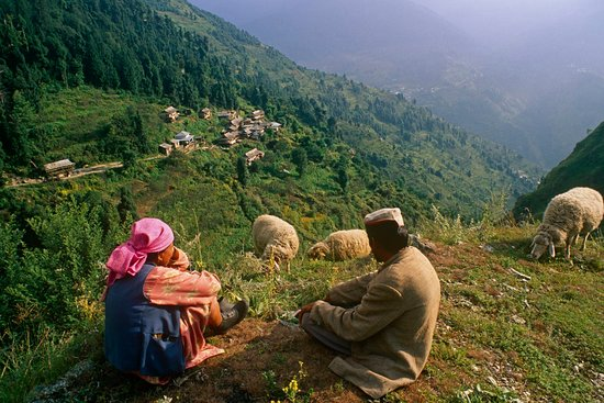 Himachal by Locals