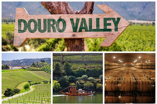 Douro Valley Tour: Wine Tasting...