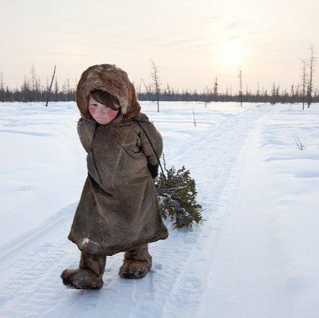 Siberia 41