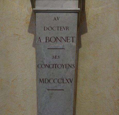 Bust of Docteur Amédée Bonnet