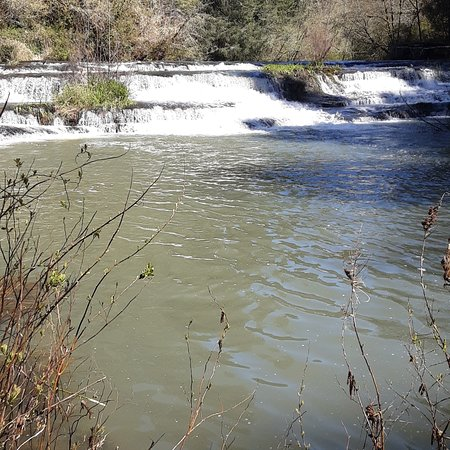 Lorane, OR: I went to Siuslaw Falls and had an awesome time taking pictures.