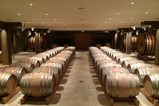 Crus Classés Golfe de Saint-Tropez Wine Tour