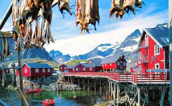 Lofoten Island 41