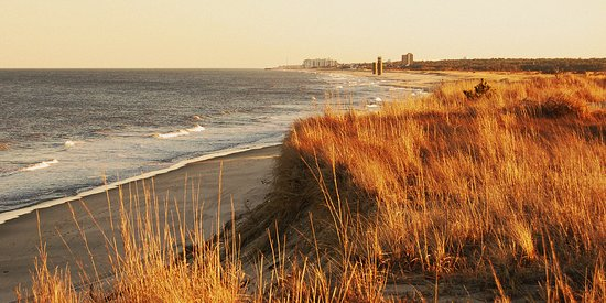 THE 10 BEST Delaware State Parks (with Photos) - Tripadvisor