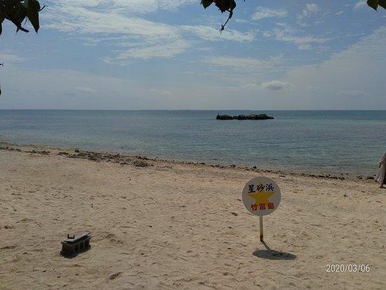 穏やかで静かなビーチ