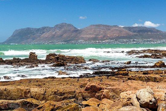 Half-Day Private Tour to Cape Peninsula ...