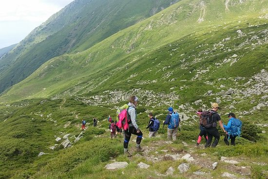 PRIVATE, EASY Day Hike in Carpathian...