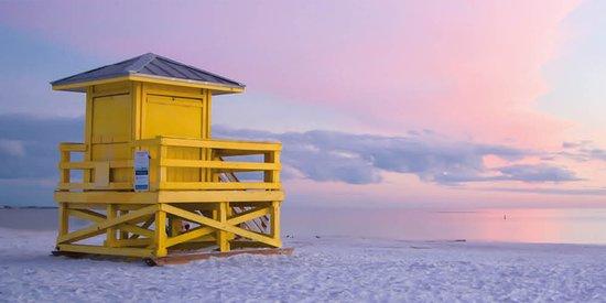 Best of Siesta Key, FL