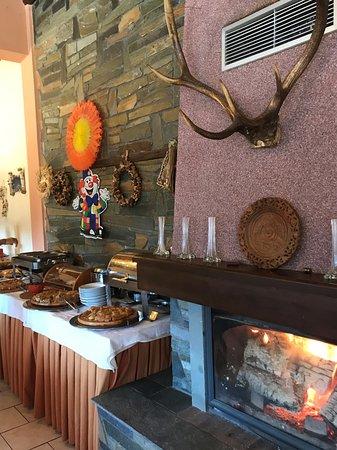 Neraidochori, Greece: The fireplace by the breakfast buffet