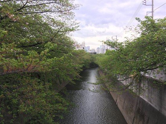 Kanda River Shiki-no-Michi