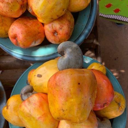 Mozambique: Cashew fruits