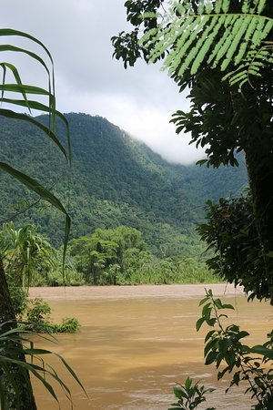 Tingo Maria National Park, Peru: Reserva Nacional Tingo Maria - muy rico en flora y fauna, en este parque podras ver distintos animales y una gran variedad de plantas algunas de ellas son medicinales