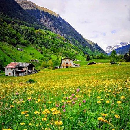 Grosio, İtalya: Val Grosina