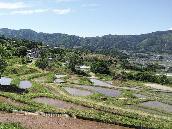 2019/05 広大な眺め。姨捨(おばすて)伝説は涙がちょちょぎれるお話です。読んでみて下さいね。 Huge rice terraces
