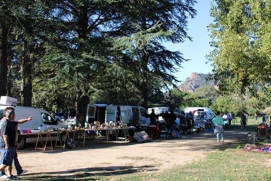 Roquebrune-sur-Argens, Frankreich: broacnte