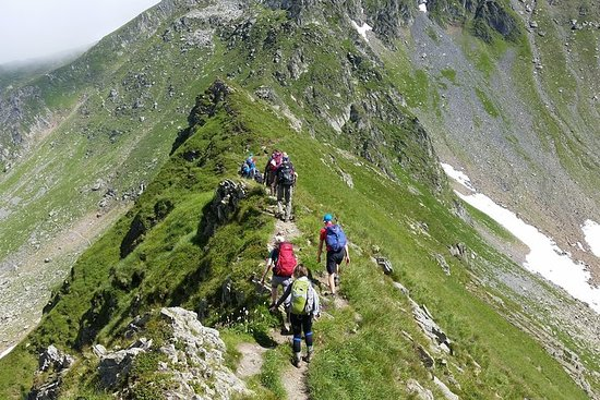PRIVATE, MEDIUM Day Hike in Carpathian...