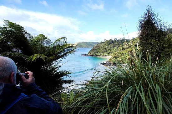 5-Day Stewart Island Tour with Small Group from Dunedin